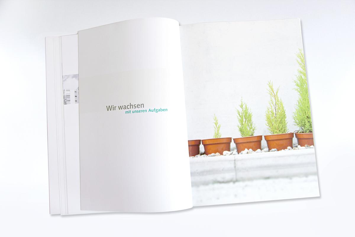 Palu Suisse, Geschäftsbericht