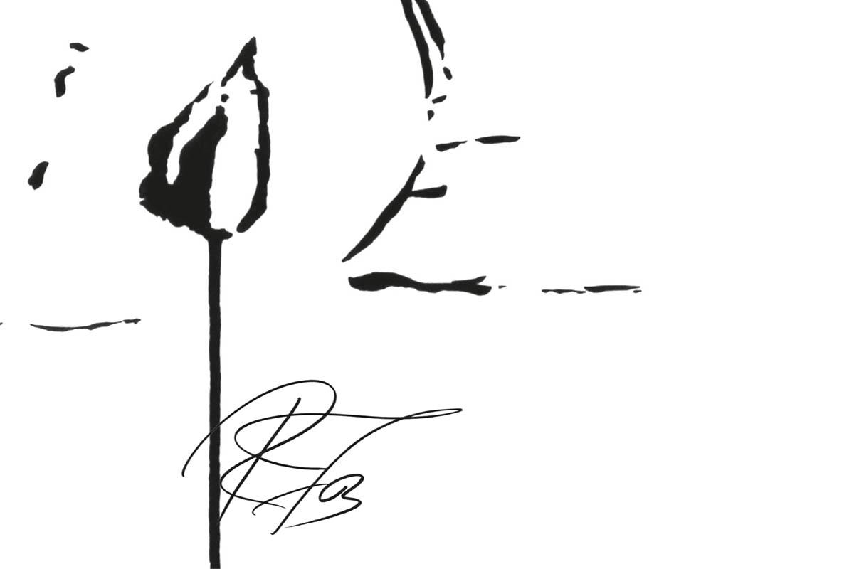 Faces / Serigrafien und Zeichnungen